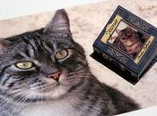 OOAK Miniature Book: JEIMIE