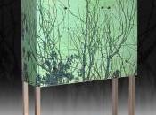 Sferzato vento cresco come alberi belli