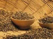 Cereali: grano saraceno, segale avena