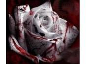 Melania Rea: personalità fragile. Suicida amore Salvatore Parolisi?