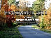 Novembre 2011 Avvenimenti, novità, curiosità tutto quello devi sapere