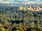 Cairo oasi egiziane