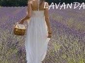 "RECENSIONE: ""Profumo lavanda"" Samanta Catastini"