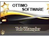 Schede inattive Ecco come chiuderle automaticamente Google Chrome Wrangler