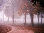 Autunno parco Arcadia