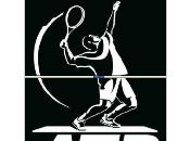 Tennis: Master Londra 2011 Crolla Djokovic