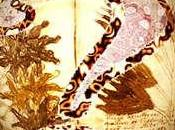Cinque libri illustrati