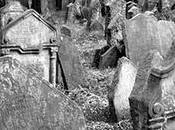 """morte della ragione"""" Amiri Baraka"""