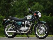 Kawasaki W800 Special Custom Pleasure