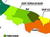 cos'è quest'olio Terra d'Otranto?