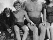 Mistero sulla morte dello scimpanzè Cheetah (Cita) potrebbe essere bufala ecco perchè