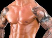 Randy Orton fuori mesi