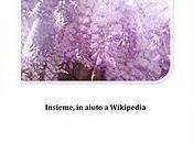Blogger Wikipedia, racconto sottoscritto