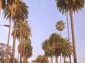 L'altra faccia Beverly Hills (1998)