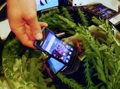 Motorola Defy, aggiunge fujitsu, smartphone subacquei