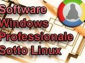 Software Windows professionale Linux