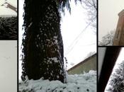 prima nevicata 2012!!