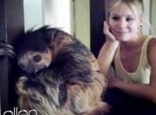 Kristen Bell lacrime bradipo!!