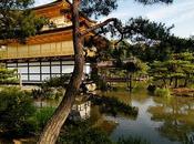 10.000 biglietti aerei gratuiti visitare Giappone
