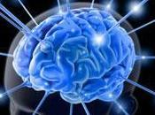 """""""Neuropolitica americana"""" come possibile chiave interpretativa della politica internazionale"""