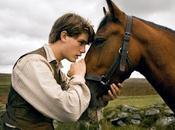 Horse: aprite quel cavallo