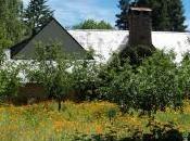 Nuovi luoghi culto: casa Steve Jobs Palo Alto