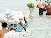 Accuse potenti pakistan hanno deviato corso dell'acqua irrigare campi. portando 1600 morti durante ultime inondazioni