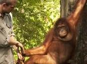 Scienziati accorgono l'uomo uomo scimmia