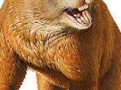 megafauna australiana estinse colpa primi cacciatori?