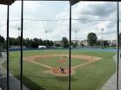 Torino pronta partire campionati baseball softball